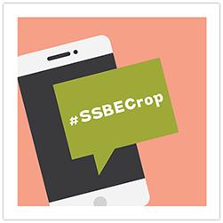 SSBE Crop Theme