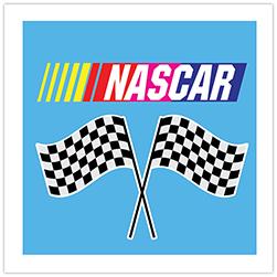 NASCAR Crop Theme