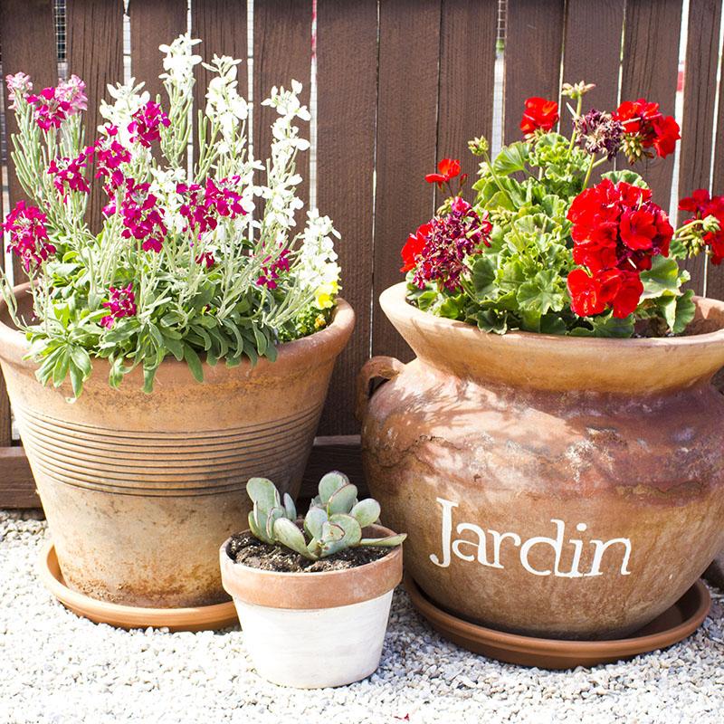 Stenciled Garden Pots