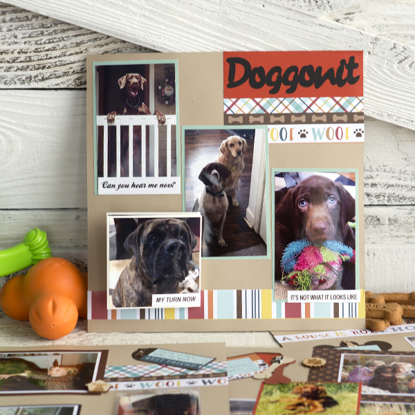 _Cattitude or Doggonit Interactive Layout