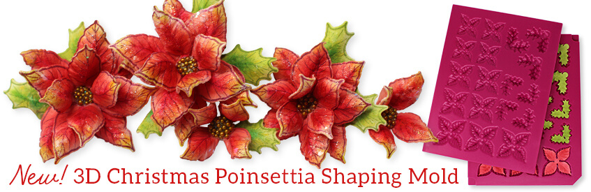 CREATIVE EXPRESSIONS U MOUNT Stamps CHRISTMAS FLORALS Poinsettia Blessings