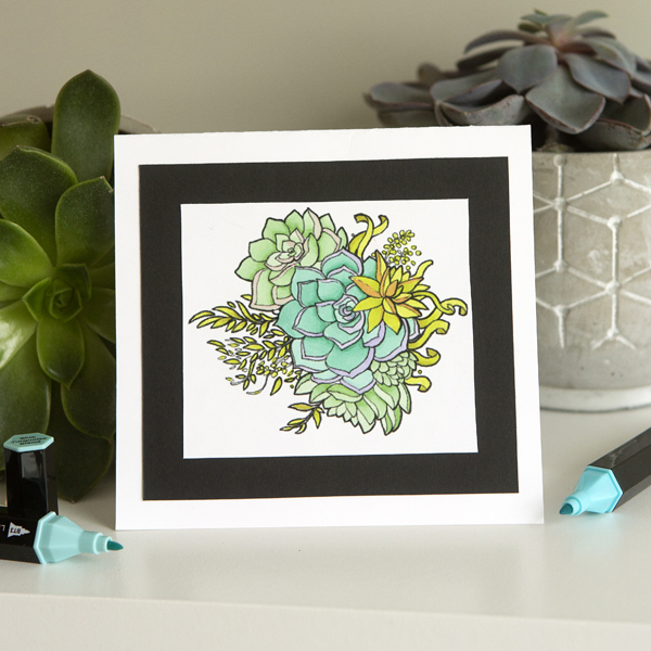 _Alcohol Marker Succulent Card