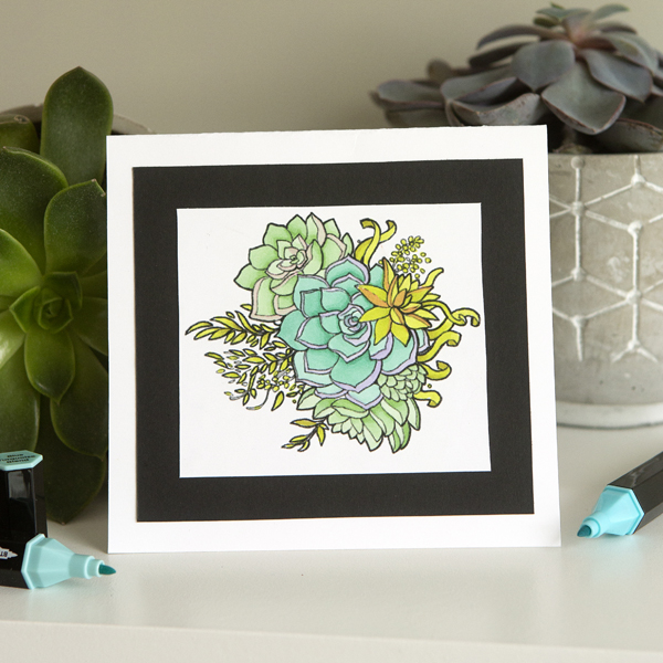 _Alcohol Marker Succulent Card - Shades of Green